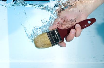wash brush large